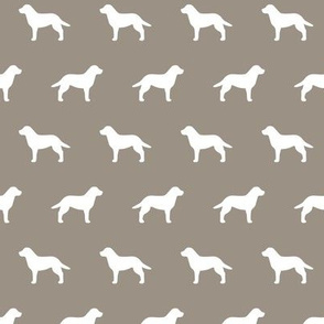 Labrador Retriever Warm Gray