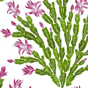 Christmas cactus damask - hiking cranberry, lavender and green