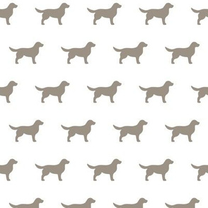Labrador Retriever Warm Grey