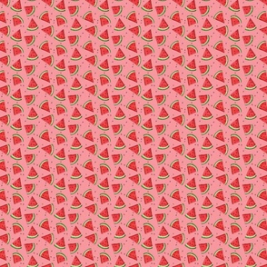 Tossed Watermelons - Pink texture - SMALL