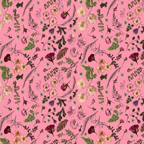 Bohemian Roses Pink