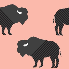 Buffalo Stripe on Salmon Blush Pink