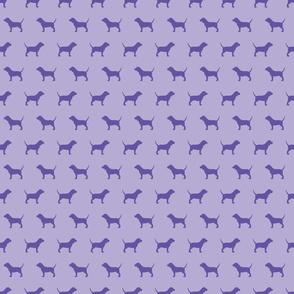 Beagles_Violet