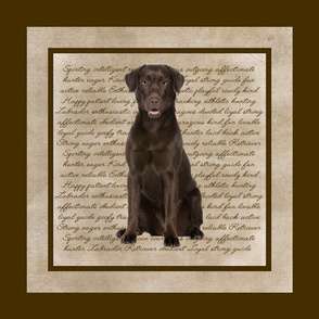 Chocolate Lab Quilt/Pillow Panel