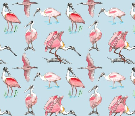 Roseate-spoonbills-on-blue-10x10_shop_preview