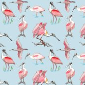 Roseate-spoonbills-on-blue-10x10_shop_thumb