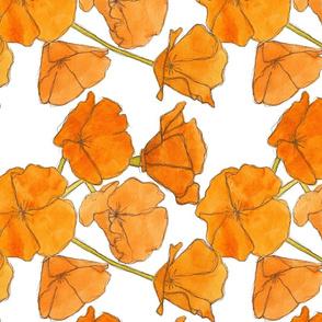 Poppy Pattern Railroaded