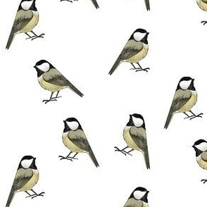 Chickadees - Tiny Scale