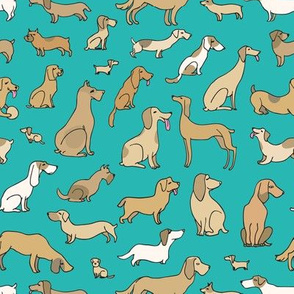 Dogs on turquoise  background
