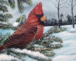 Rrrrrcardinal-on-wood_ed_thumb