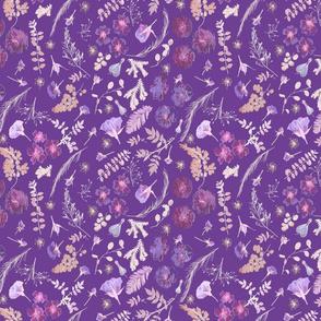 boho violet garden