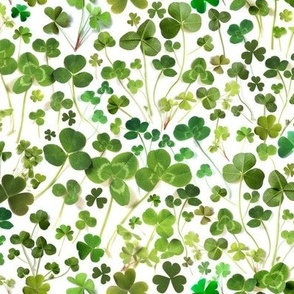 Green Shamrocks and Clovers