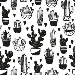 All My Cacti b&w