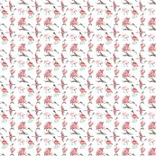 Roseate-spoonbills-on-white-3x3_shop_thumb