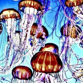 Jellyfishies