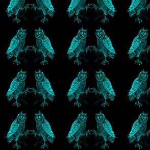 The Stygian Owl