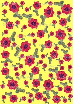 Tumbling Quillie Flowers Yellow