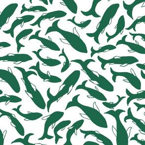 School of fish in green