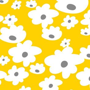 giant-daisies_pat