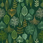 Golden and green  leaves on  dark green background