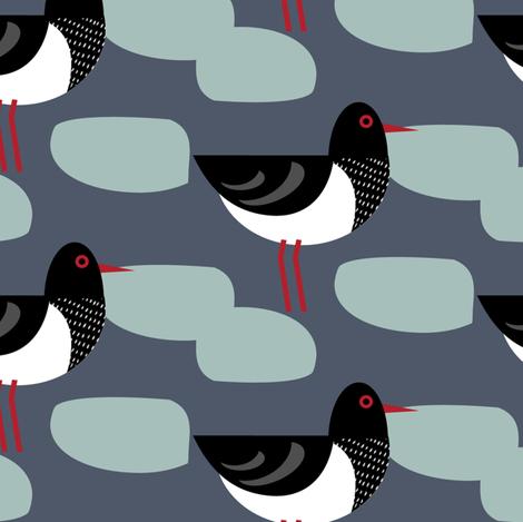 Oystercatcher fabric by louise_brainwood_designs on Spoonflower - custom fabric