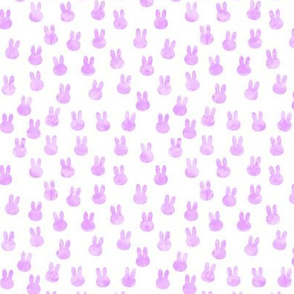 small bunnies in bright purple