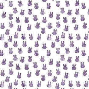 small bunnies in purple