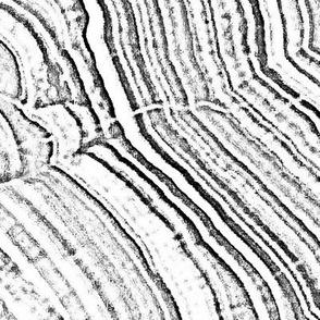 Stone-Edged#2