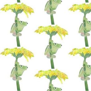 Frog In Rain Under a Flower
