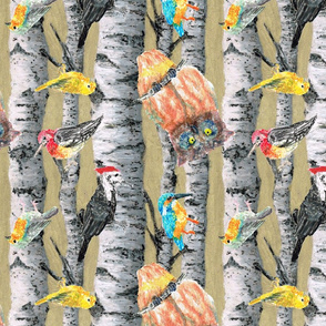 birds mix on birchtrees-01