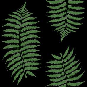 Large Fern Green Fern Leaf Silhouettes on Black