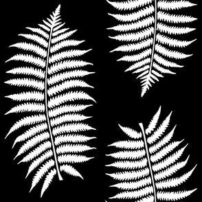 Large White Fern Leaf Silhouettes on Black