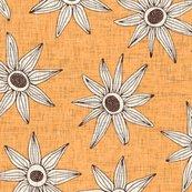 Rsema-apricot-brown-st-sf-29012018_shop_thumb