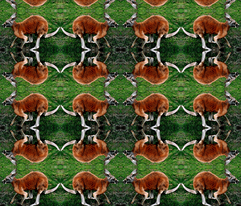 Roo fabric by jacneed on Spoonflower - custom fabric