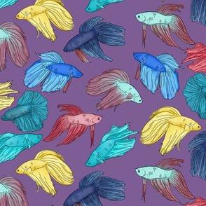 Watercolor Betta Fish on Purple