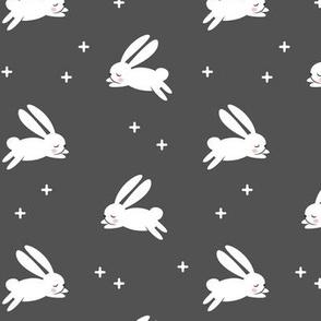 bunnies on dark grey