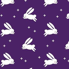bunnies on purple
