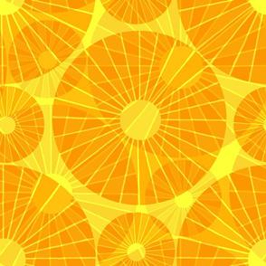 Sunshine Paper Fans