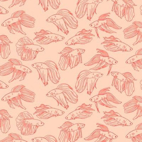 Betta Fish on Pink