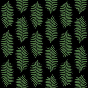 Medium Fern Green Fern Leaf Silhouettes on Black