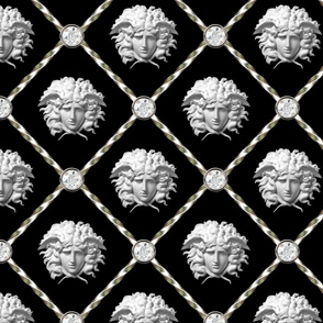 1 diamonds jewels gems trellis interlinked criss cross interconnected connected medusa versace inspired  baroque rococo silver black white Greek Greece gorgons mythology