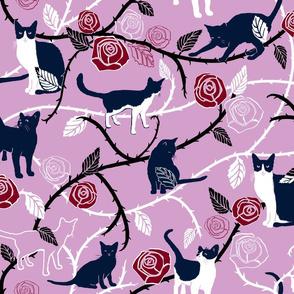 Rose Garden Cats