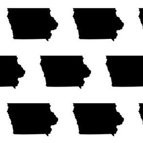 Iowa // Large