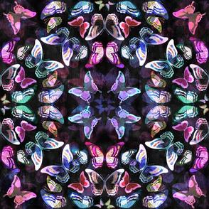 Butterfly Mandala-b