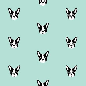 Cute French Bulldog on Mint, Black and White Love