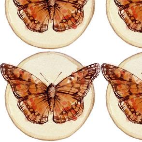 Estampa de borboleta
