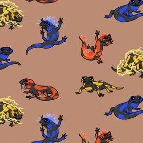 Fire Salamander ,Water Salamander, Electro Salamander