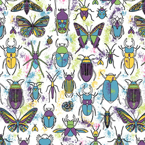 Bugs_Coloring
