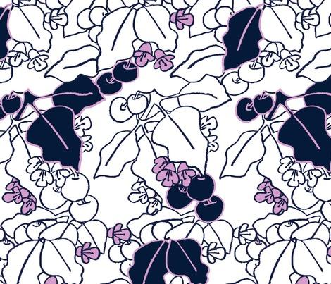 Rrrrrpuriri-berries-new-zealand_contest172117preview