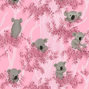 Koalas in Eucalyptus Trees on Pink Background